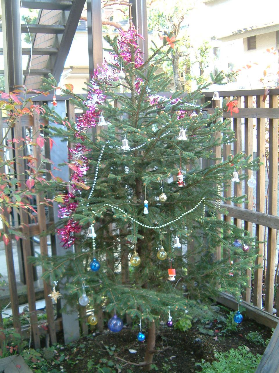 クリスマスツリー2014127 003
